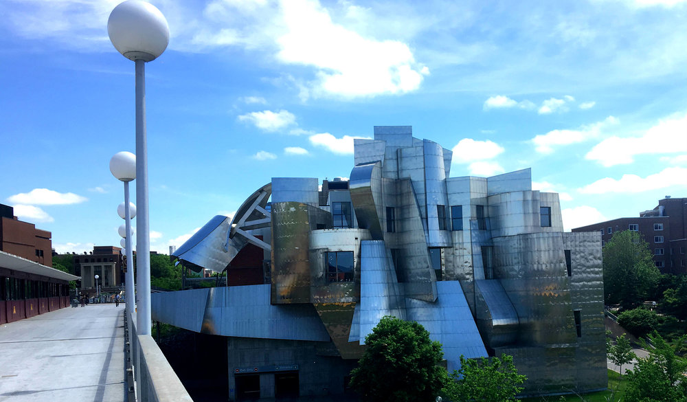 Designed by Frank Gehry