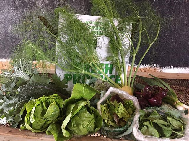 5 varieties of kale in a bunch, collard greens, butterhead and romaine lettuces, loose leaf lettuce, spinach, broccoli heads, beets, turnips, fennel, and green onion. #csa . These crops and eggs at the new #hillsidefarmersmarket in Duluth from 3-6 today! # #csafarm #greens #springproduce #notillgardening #duluthmn #cambridgemn #moramn #ruralamerica #progress #knowyourgrower #loveyourneighbor