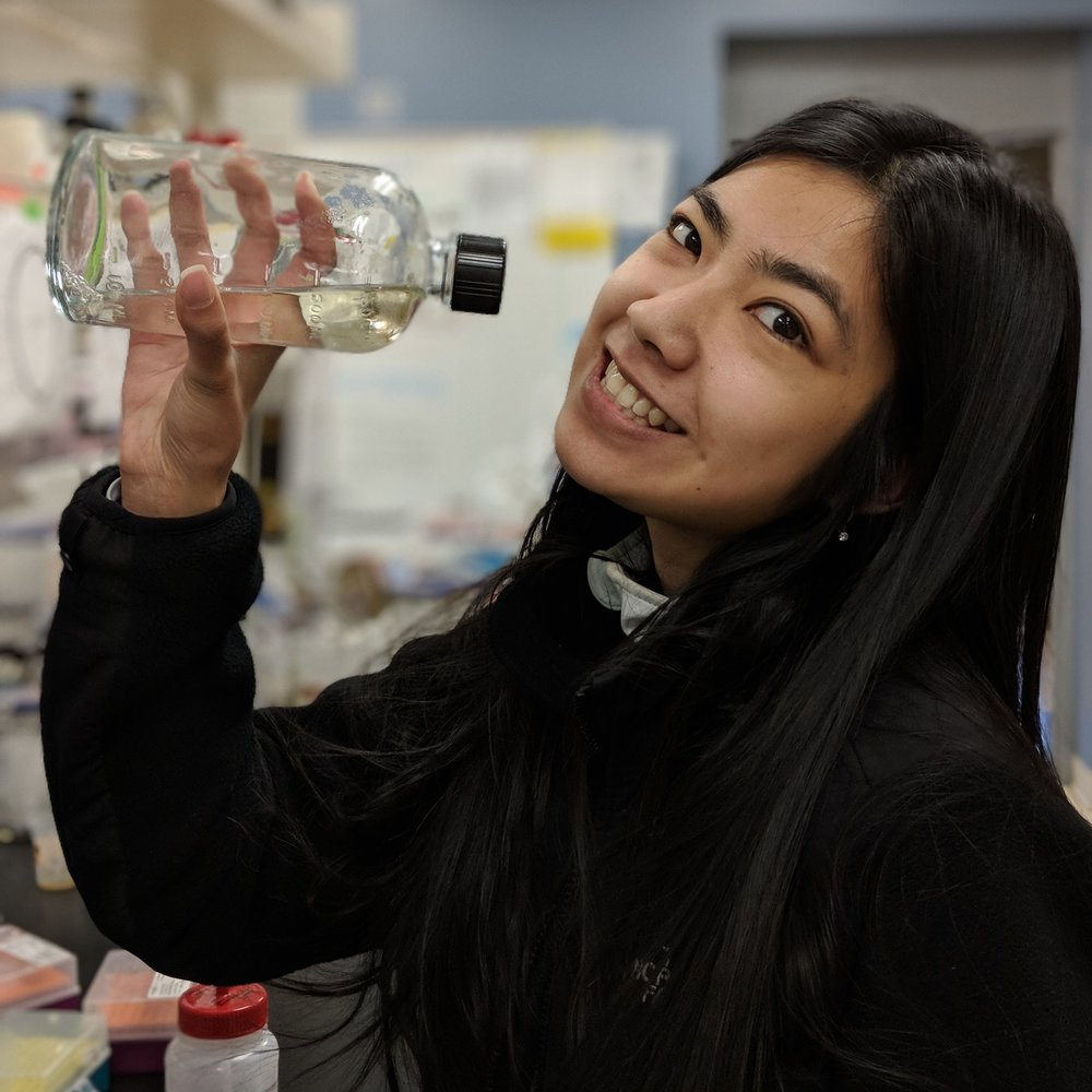 Lena Nguyen   B.S. Biology, Portland State, 2017  SSV mutant infectivity. Pokémon hunting and hiking.