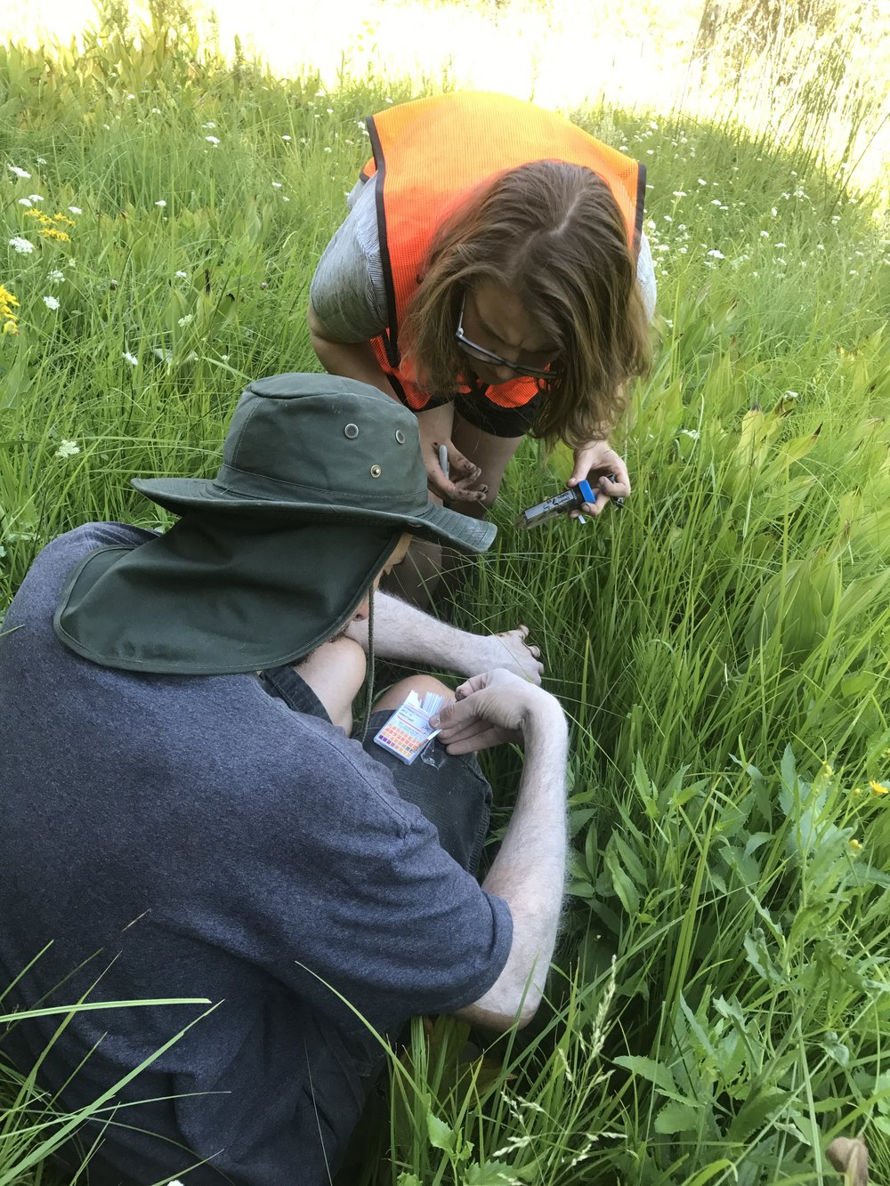 Dr. Nacho and Ellis Torrance testing the pH of soil samples from Drakesbad Marsh, Lassen Volcanic Natl. Park, Northern California.