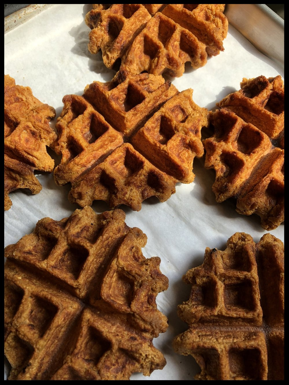 Waffles on their way to the freezer!