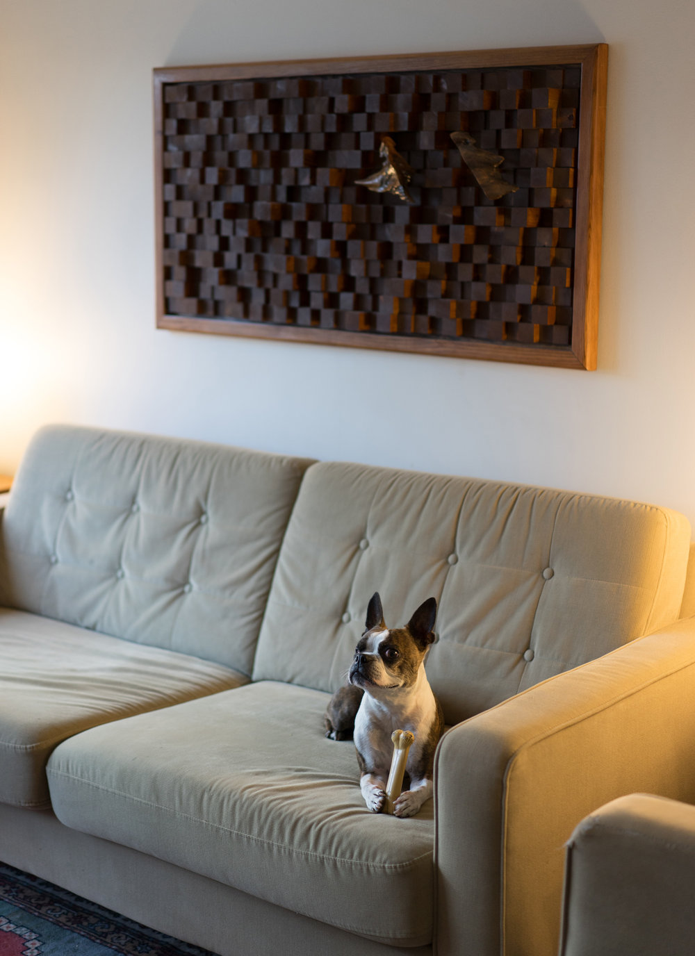 An acoustic sound diffuser reduces echo in a space and improves comfort. Look how comfortable Pasquale is.   Connect with me   and we can design something for your space.