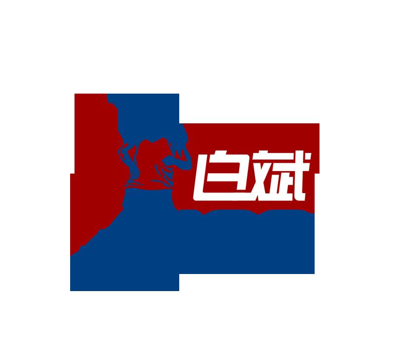 白斌100logo.png