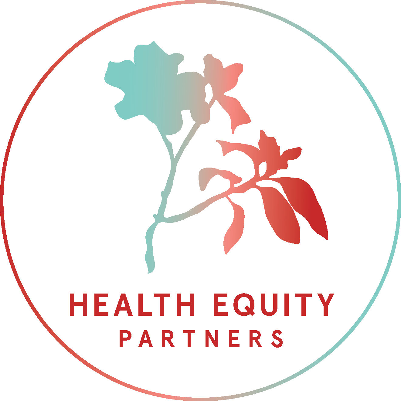Health Equity Partners