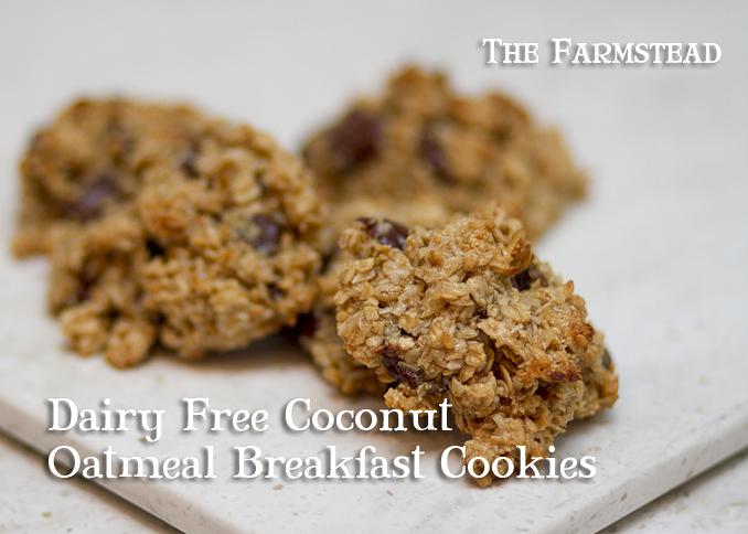 Dairy-Free-Coconut-Oatmeal-Breakfast-Cookies.jpg