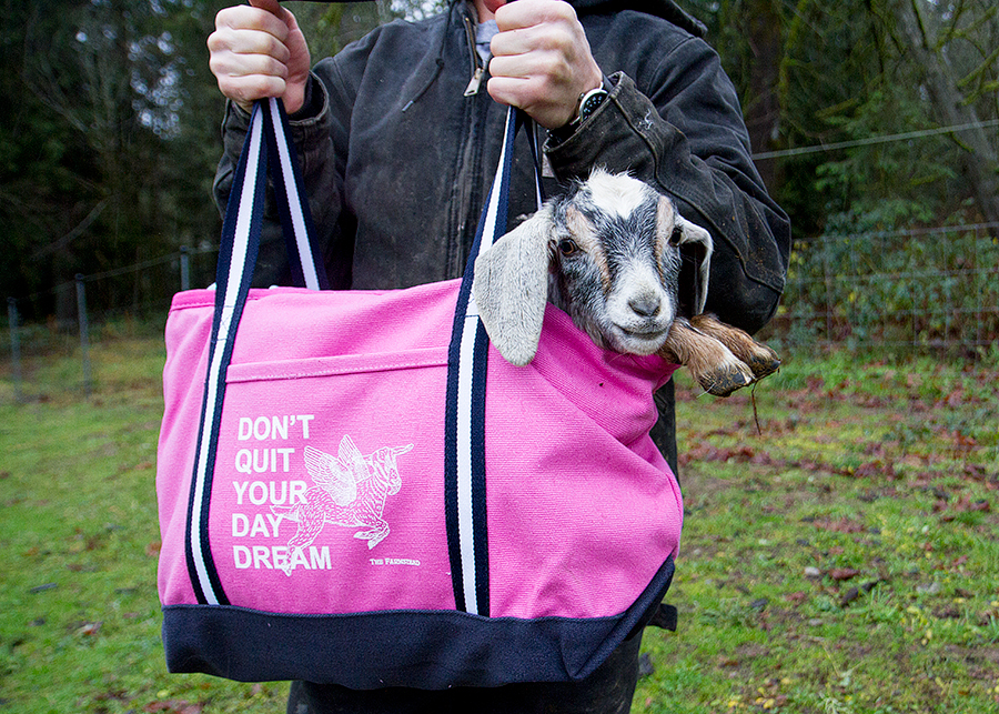 pink-bag-thefarmstead.jpg