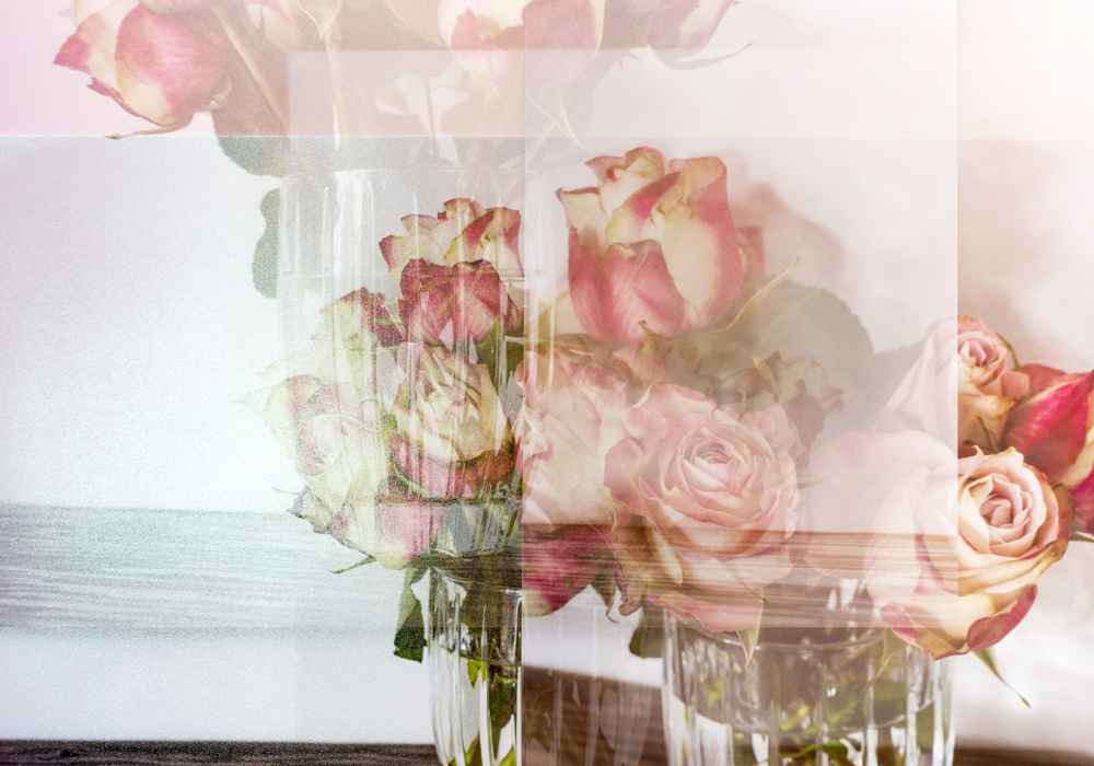 Still Life with Roses #4