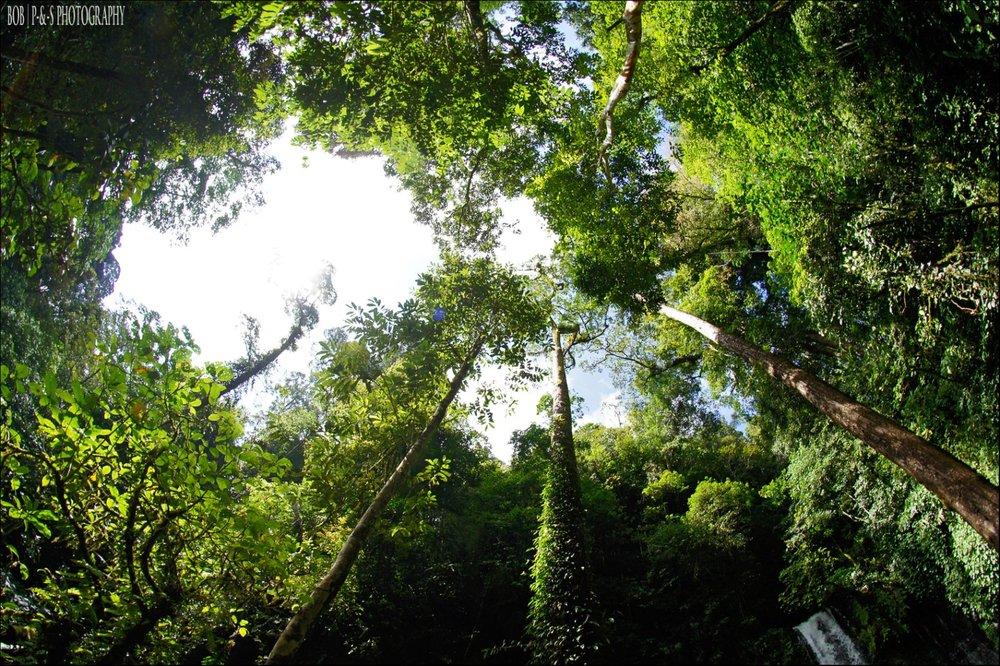 Tambunan, Sabah.