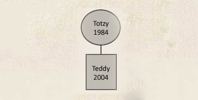 totzy_.png