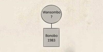 wansombo_.png