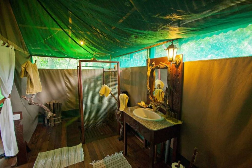 Accommodations   Safari Room
