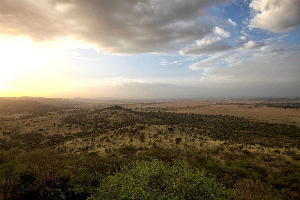 Soroi Serengeti Lodge | Soroi Views
