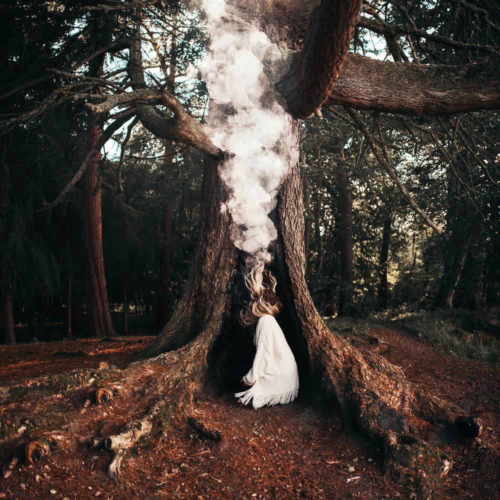 FINAL_SMOKE_TREE_FINAL_2048.jpg