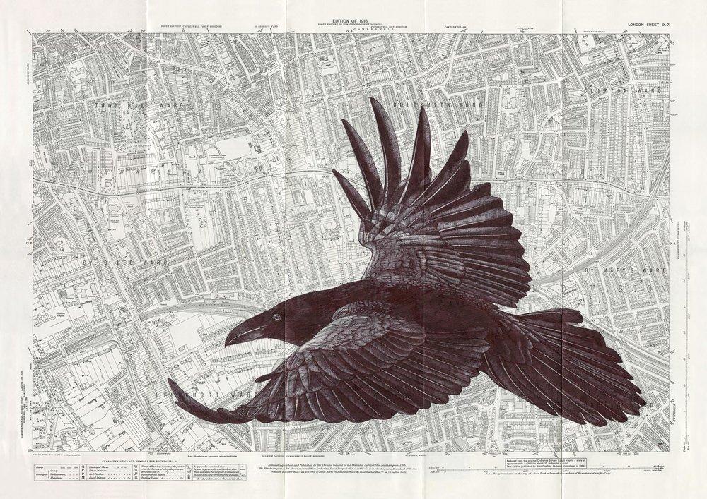 PeckhamRaven_PrintReadyMR.jpg