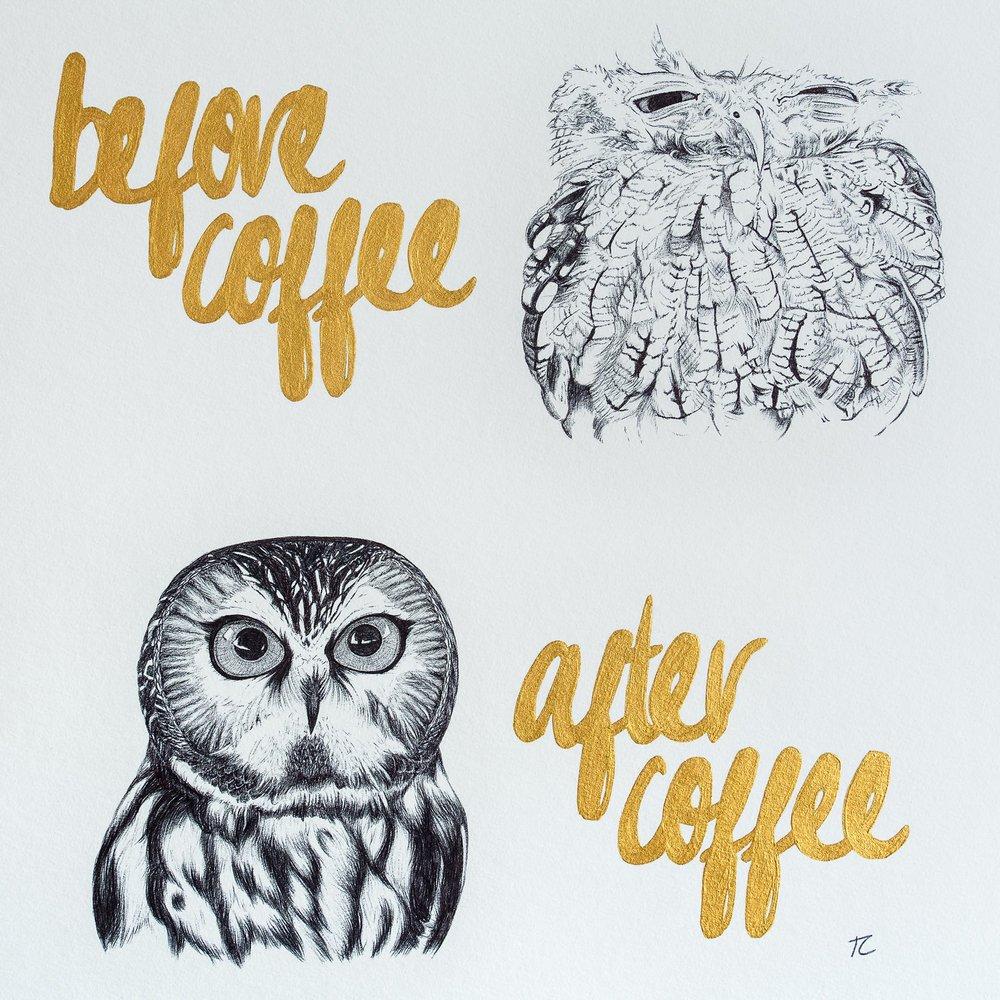 CoffeeOwls.jpg