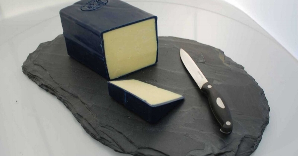 cheese-web.jpg