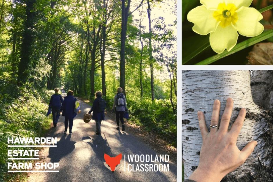 spring-equinox-walk-event-page-thumbnail-2-min.jpg