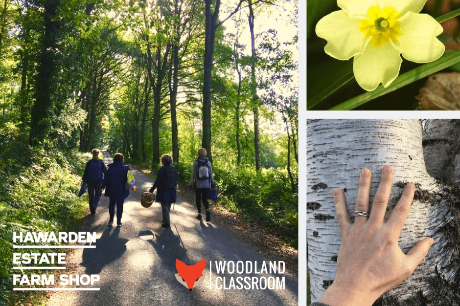 spring-equinox-walk-event-page-thumbnail-2-min-2.jpg