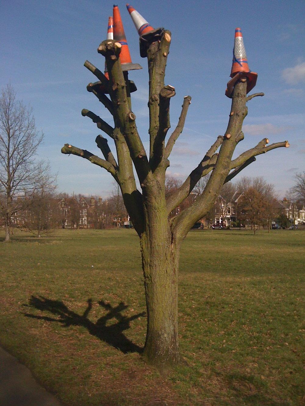 Wandsworth tree