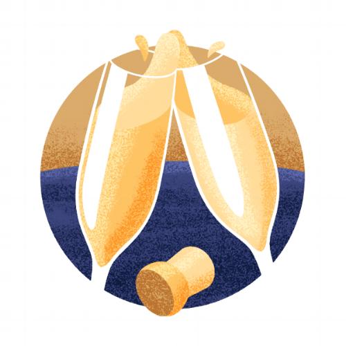 Champagne icon illustration