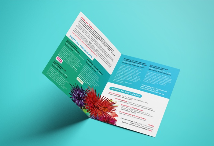 leaflet spread