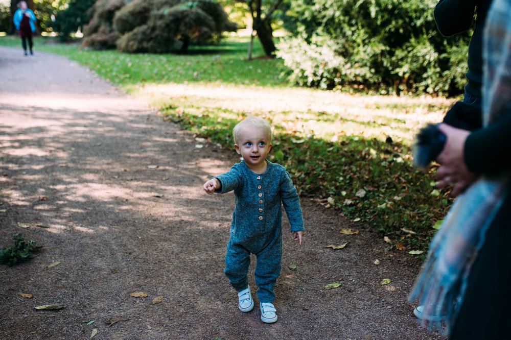 A toddler  points to something he wants to show his father during autumn family photo shoot at Westonbirt Arboretum.