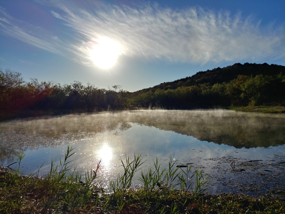 The pond in the morning at Cedar Ridge Preserve - Dallas, TX