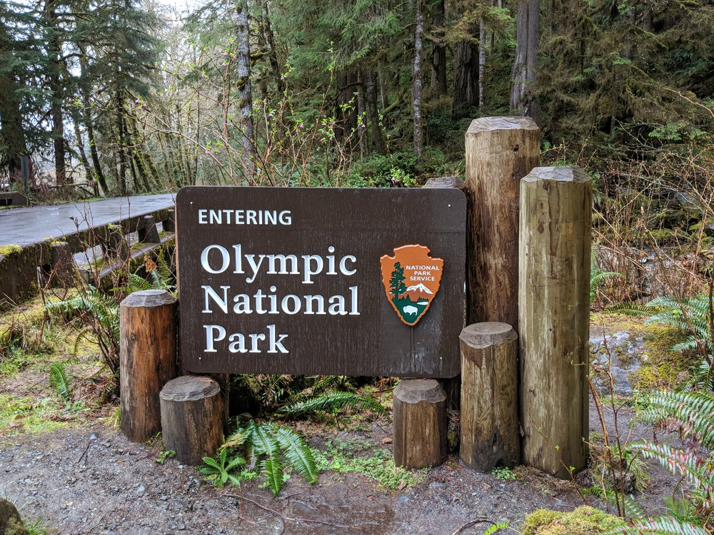 You technically enter the National Park along the dirt road deep into the valley, I'm assume after leaving it for Olympic National Forest.  The borders and boundaries flow together.