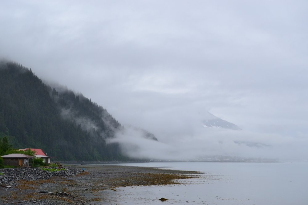 A foggy view just south of Seward
