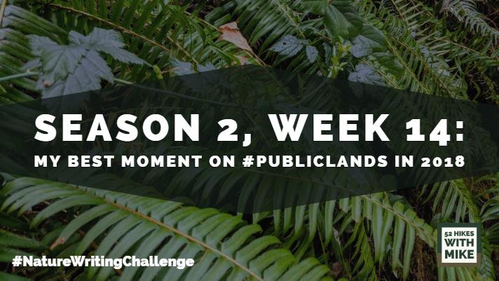 NWC - Season 2, Week 12.jpg