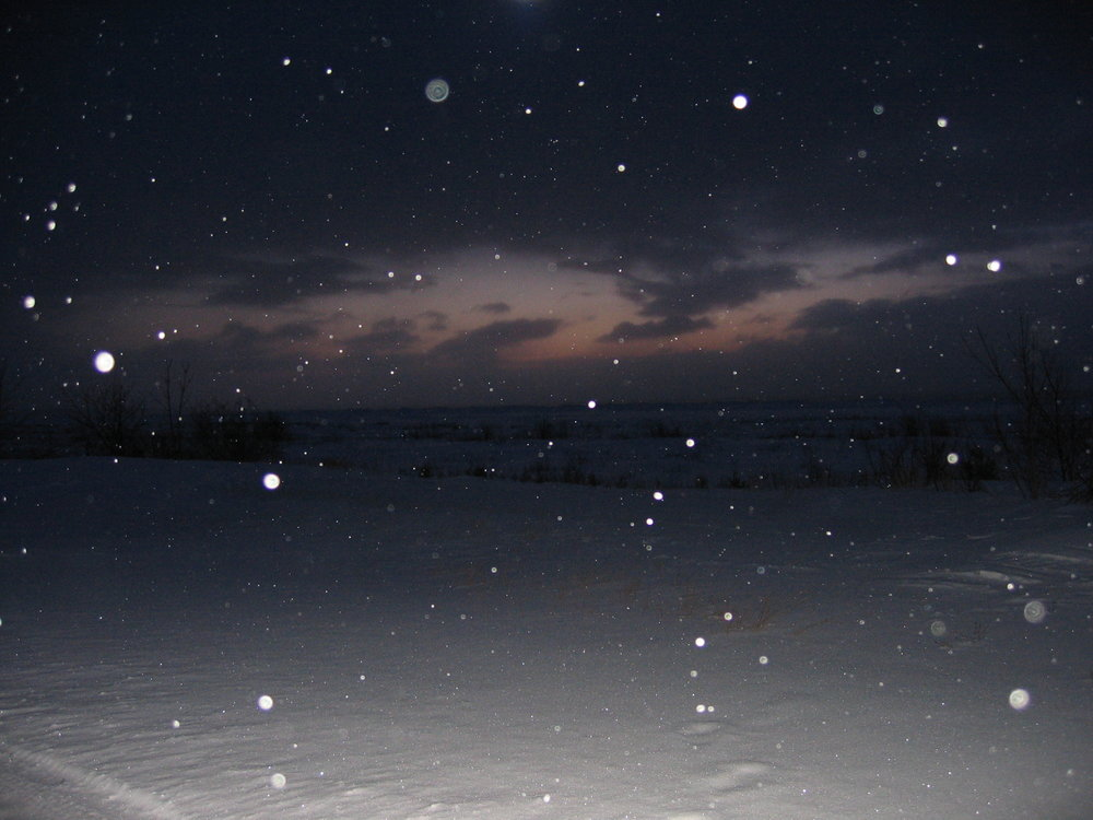 Morning was starting to show and this photo happened in the Upper Peninsula of Michigan. Flash + snow.