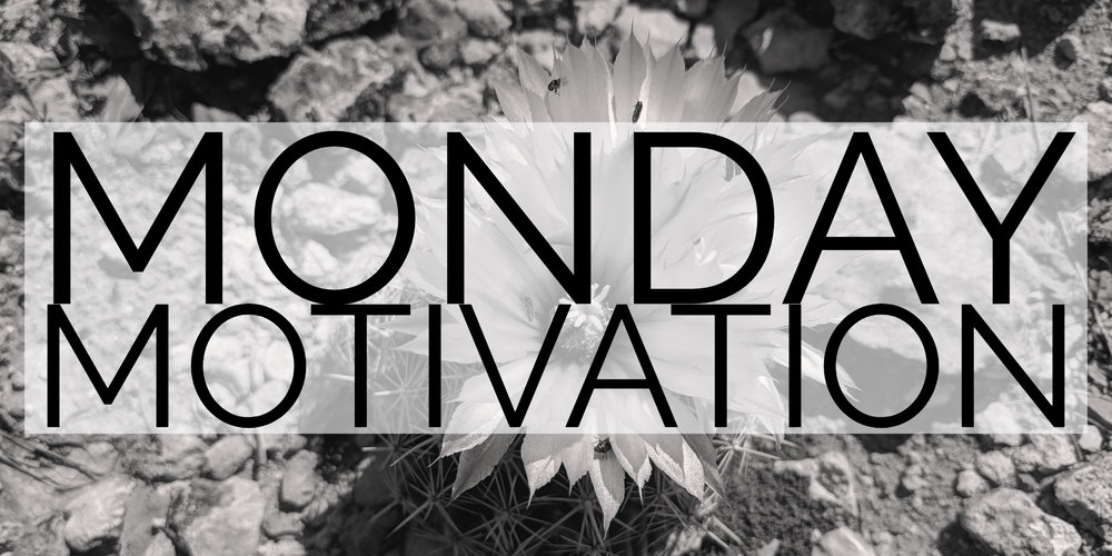 Monday Motivation Header Copy.jpg