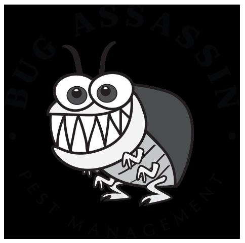 Are these Fire Ants? — Bug Assassin Pest Management - Vero Beach Pest  Control & Exterminator - Sebastian Pest Control & Exterminator