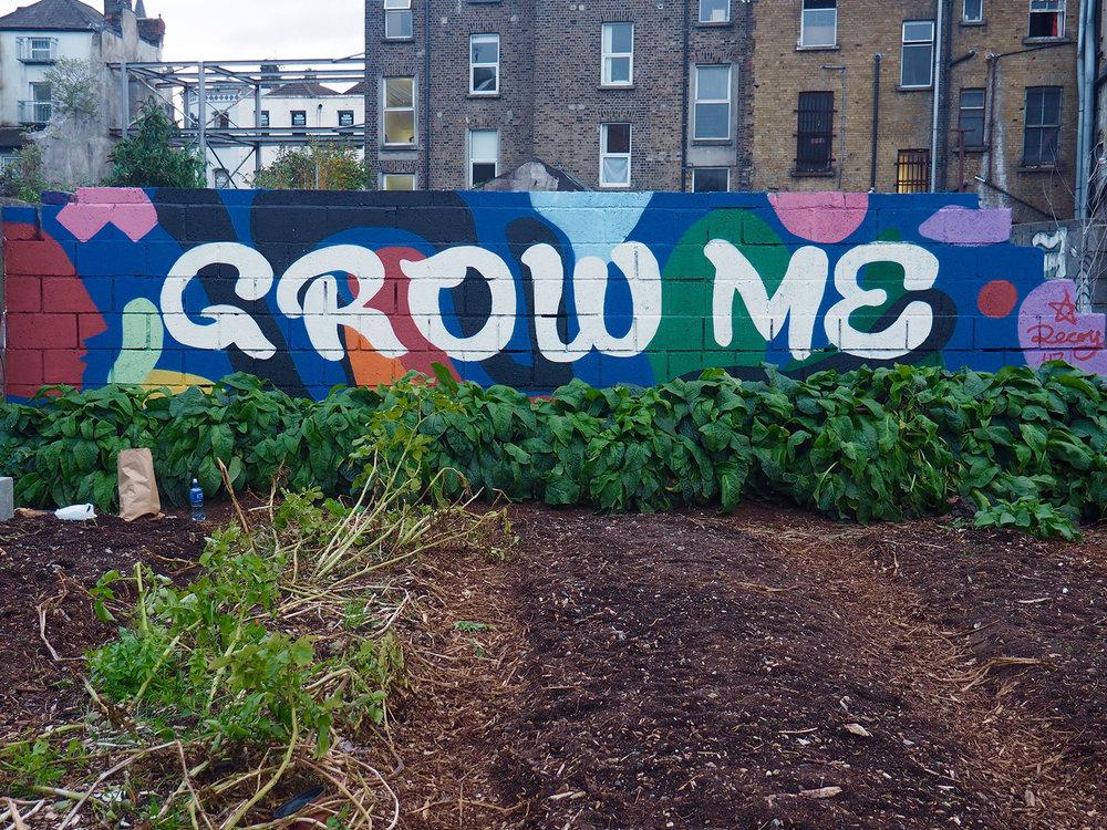 Grow-Me.jpg