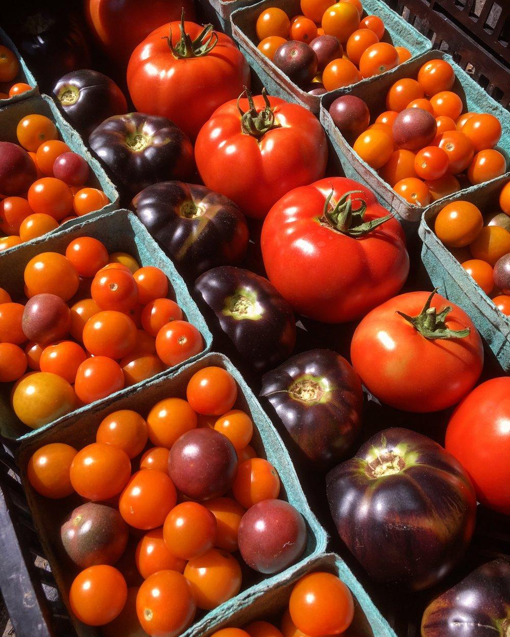 Heirloom & Cherry Tomato.JPG
