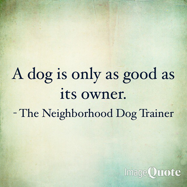 📣Public Service Announcement📣 #TheNeighborhoodDogTrainer #PublicServiceAnnouncement #pets #puppies #dogoftheday #doglover #ilovemydog #puppylove #petstagram #dogsofig #dogs_of_instagram #petsofinstagram #puppiesofinstagram #doglovers #animals #doggy #doglife #pup #instadogs #instagramdogs #dogslife #instapuppy #dogsofinstaworld #lovedogs #animal #weeklyfluff #adorable #doglove #dogsofinsta #adoptdontshop