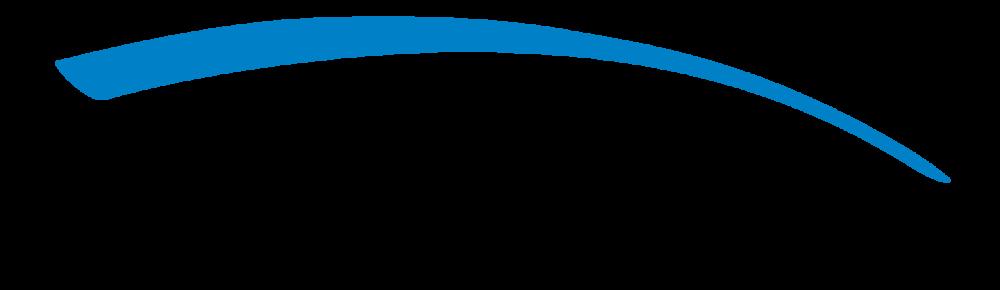 WV Logo no BG.png