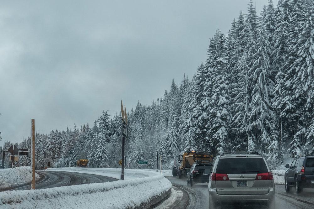 03-snowshoeing-1.jpg