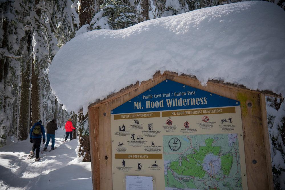 03-snowshoeing-7.jpg