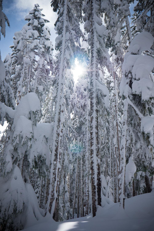 03-snowshoeing-8.jpg