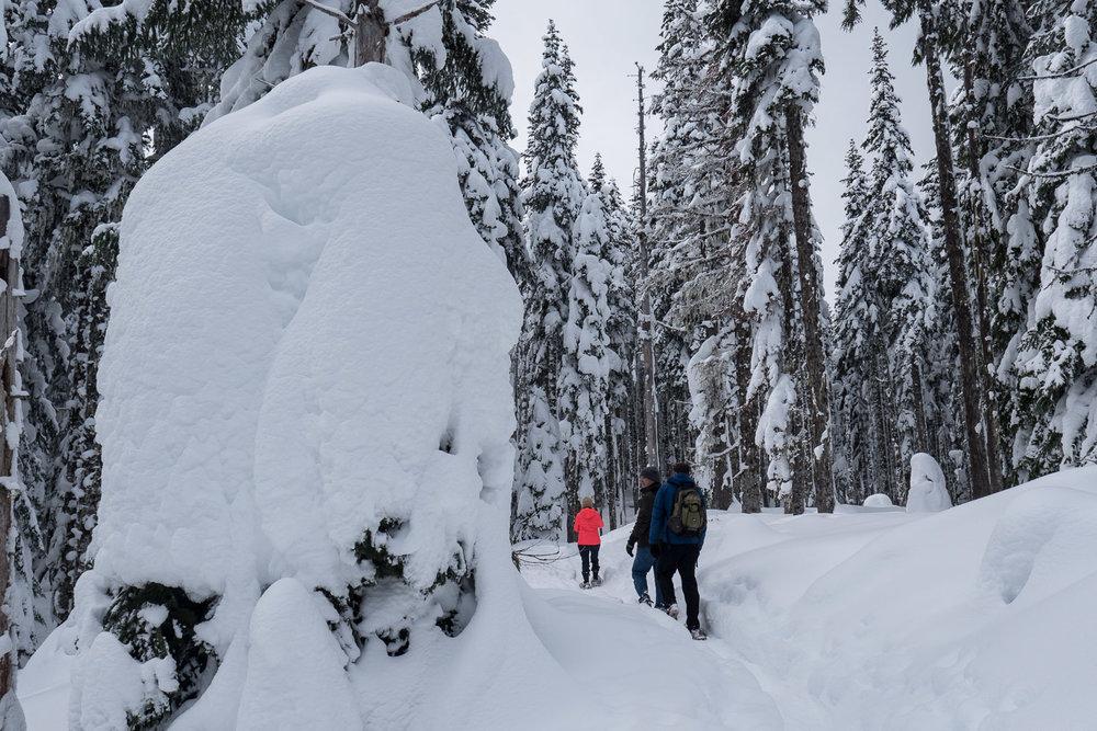 03-snowshoeing-10.jpg