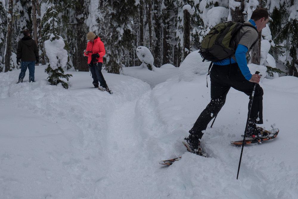 03-snowshoeing-21.jpg