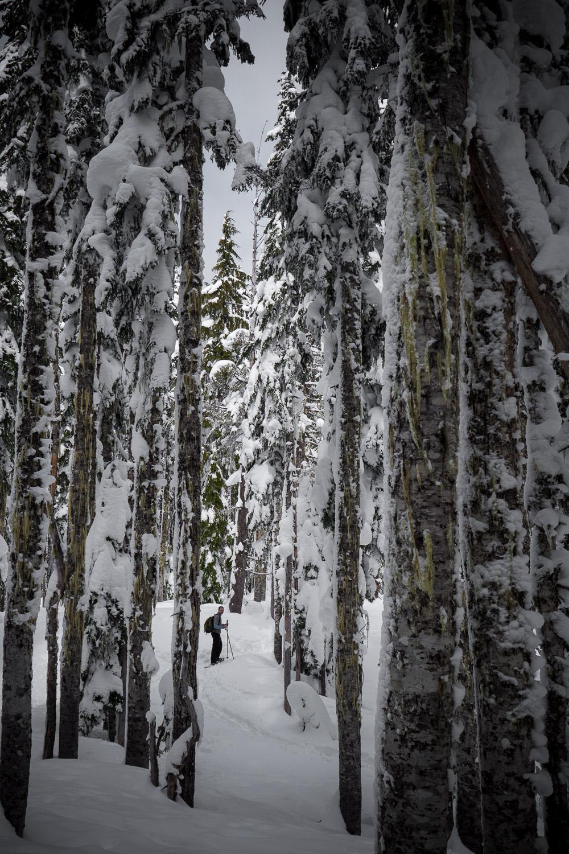 03-snowshoeing-20.jpg