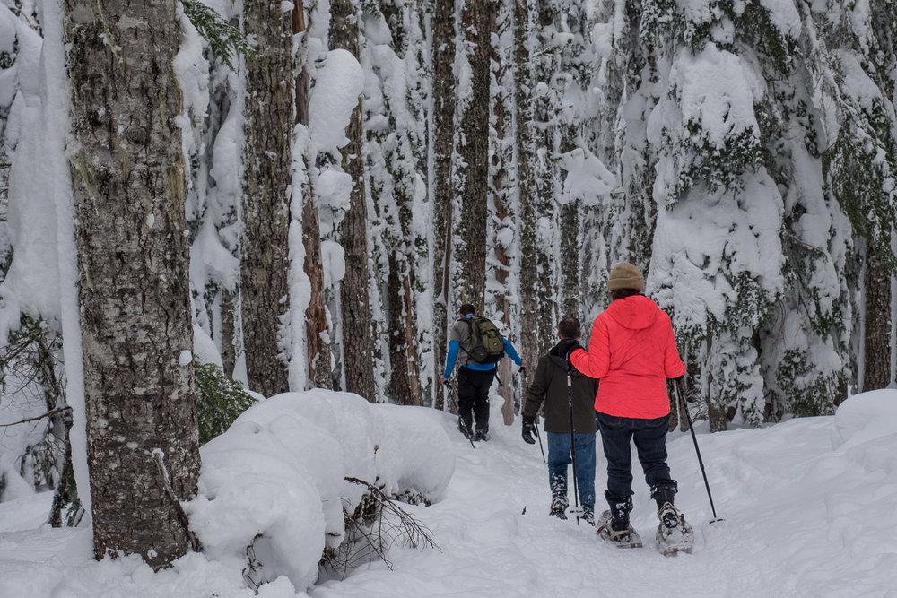 03-snowshoeing-23.jpg