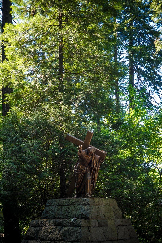 05-Trinity Grotto web-51.jpg