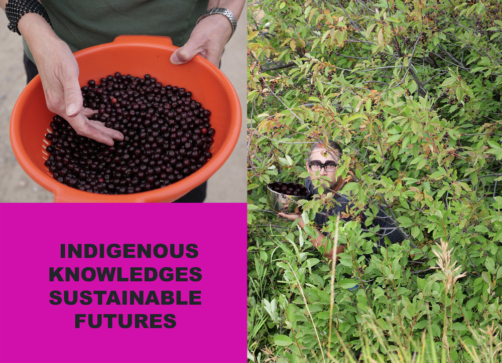 Indigenous Knowledges and Sustainable Pasts/Futures