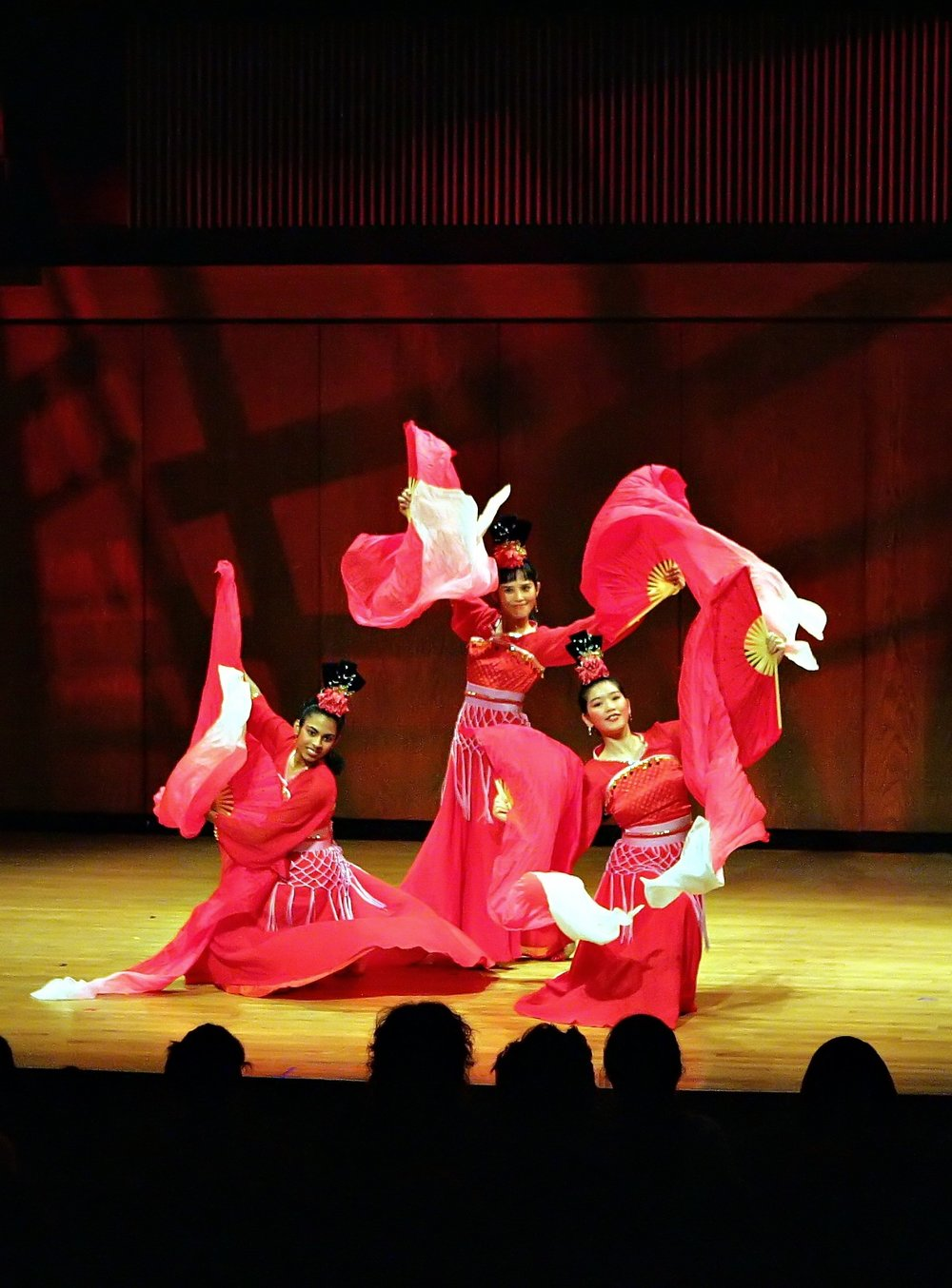CAAN Chinese Dance photo.jpg