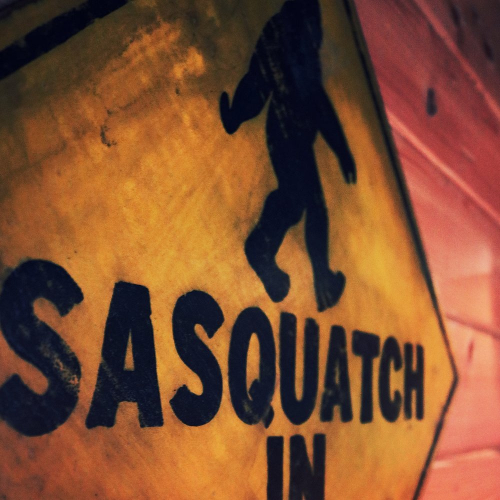 Dancing sasquatch banff's best nightclub