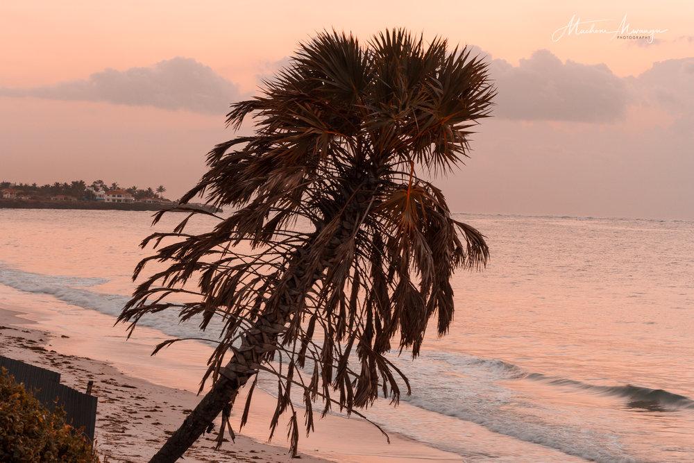 Sunrise -1-2.jpg