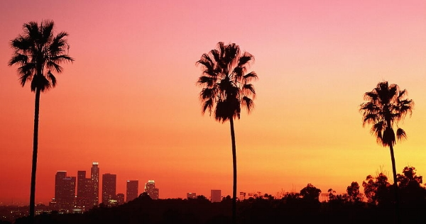 los-angeles-skyline-palm-trees-wallpaper-2.jpg